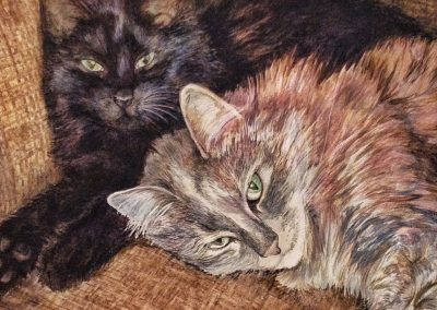 Pet Cats Painting